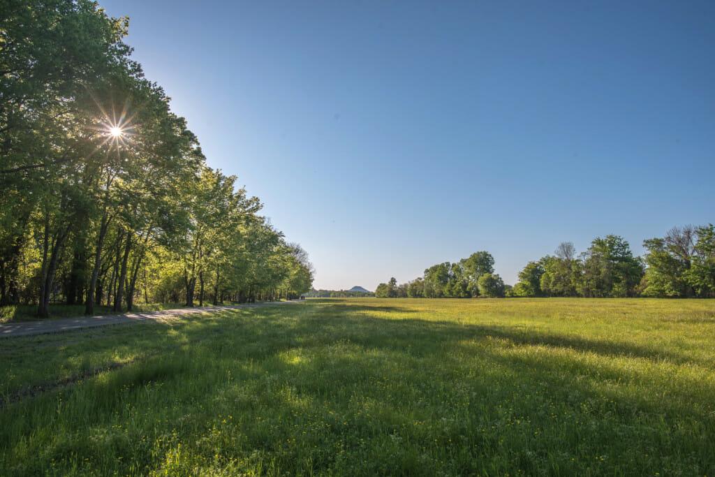 Beautiful view across a field out toward Pinnacle Mountain