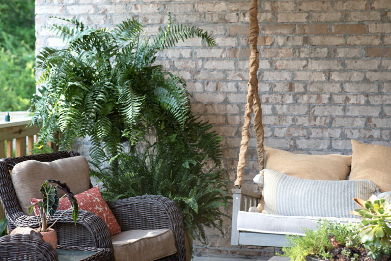 Porch Decor Ideas: How to Add Some Southern Charm to Your Porch this Summer