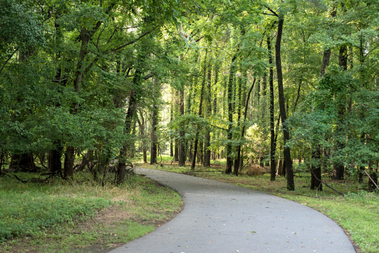 park through the woods at two rivers