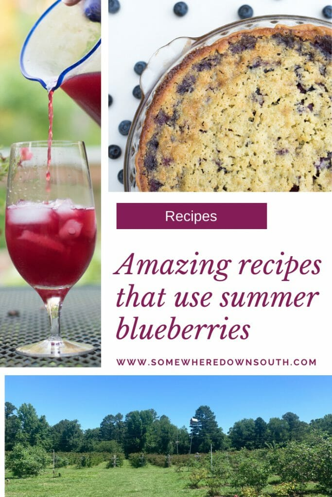 Here is a list of some great recipes that use blueberries. These are the perfect summer recipes!