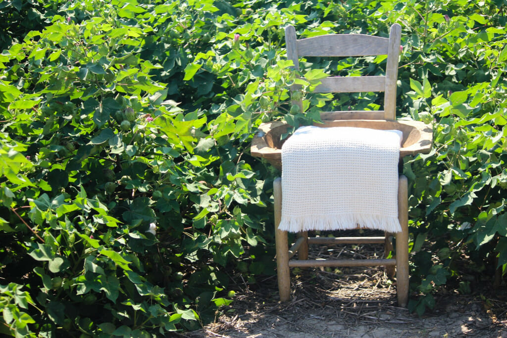Cotton throw on a chair in a field.