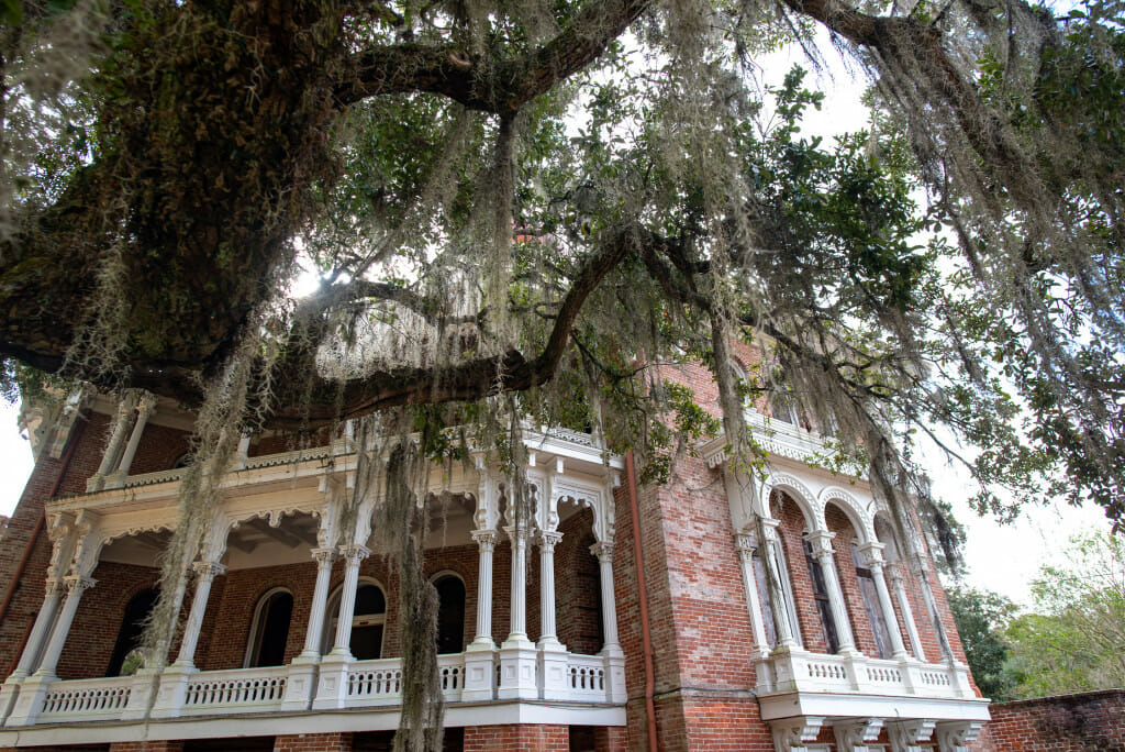 View of Longwood mansion with dripping spanish moss. Longwood mansion is one of the most fascinating of the antebellum homes in Natchez Mississippi. It is an octagonal structure that was never completed. The Deepest South of All is a book that explores the past and present of the fascinating city of Natchez. This is a book review of the deepest south of all.