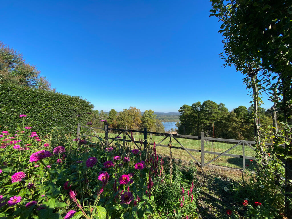 Views of the Arkansas River from the land at Moss Mountain Farm