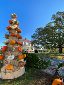 View of moss Mountain Farm behind a cone with pumpkins on it.