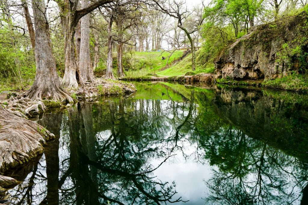 Krause Springs is one of the best swimming holes in the hill country of Texas