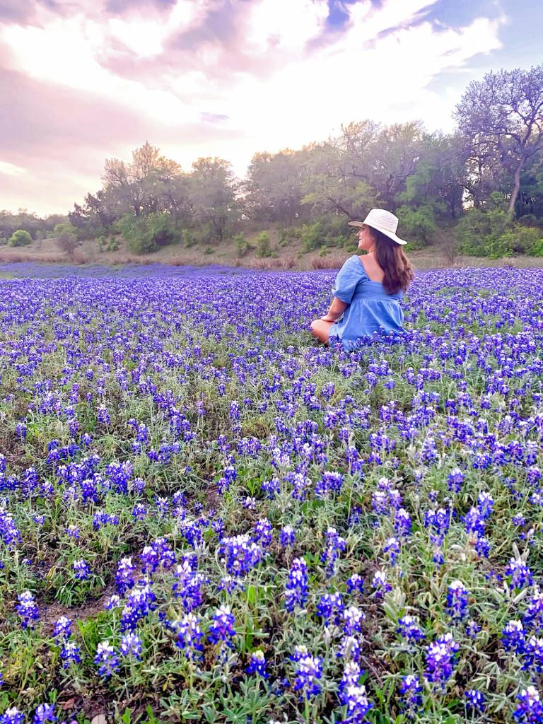 bluebonnet fields outside of Round Top Texas