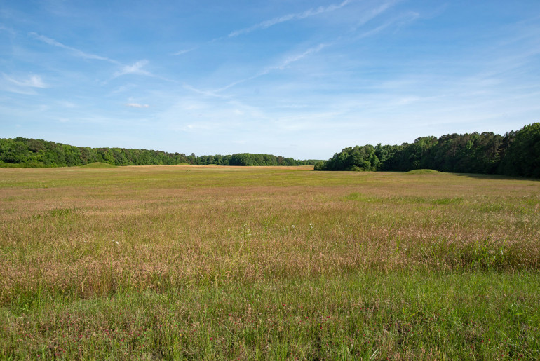 The Pharr Mounds - an important stop on the Natchez Trace Parkway