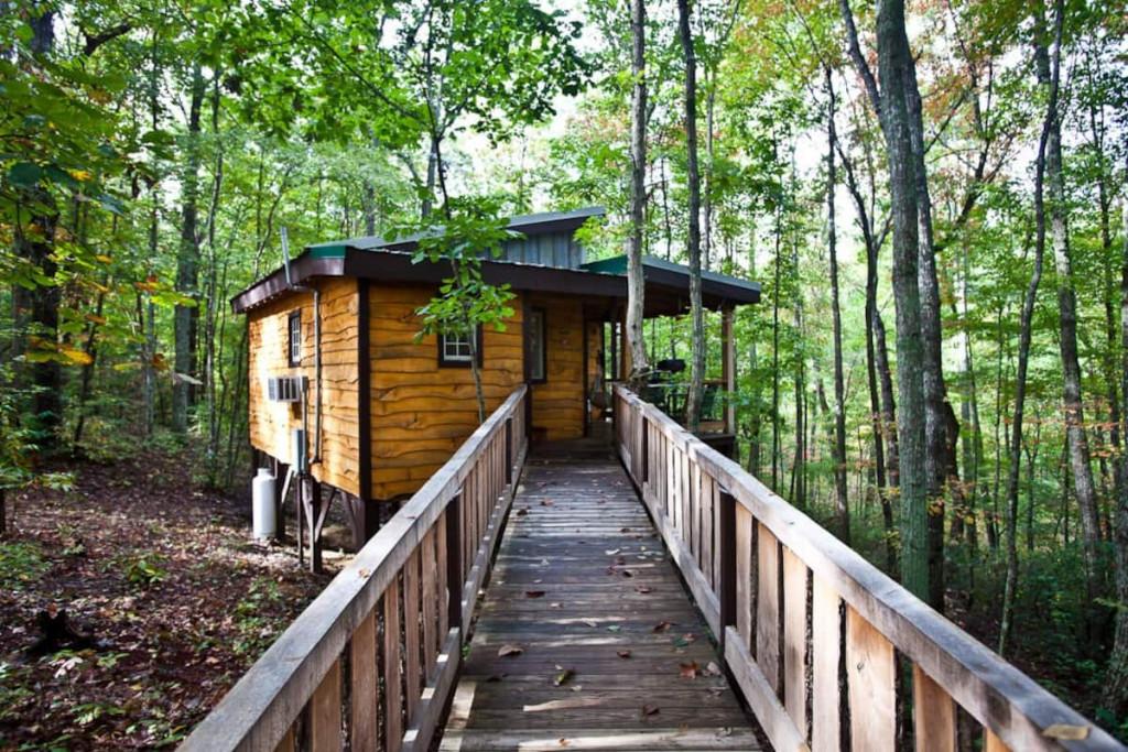 Hummingbird treehouse.