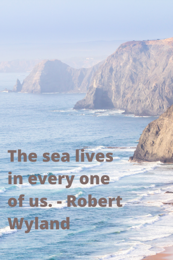 A photo of a beach with large rock cliffs on one side. There is a quote that reads: The sea lives in every one of us. --- Robert Wyland