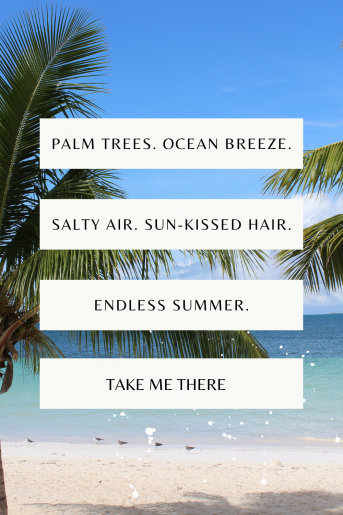 background photo is a beach with palm trees on top is a quote in a series of white squares.