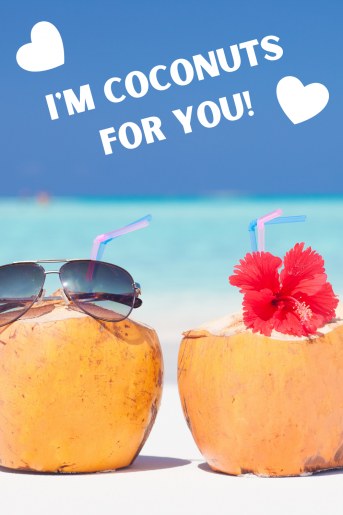 A cute photo of two coconuts with straws. One has a pair of men's glasses on top and the other has a red flower. The beach caption reads: I'm coconuts for you.