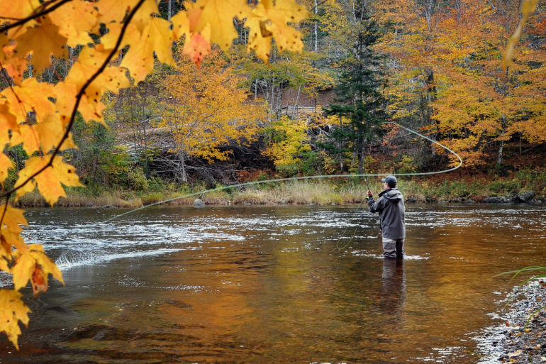 Flyfishing is one of the best things to do in Townsend, tn
